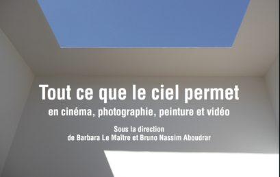 24. Tout ce que le ciel permet en cinéma, photographie, peinture et vidéo